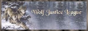 The Wolf Justic League; Very beautiful and informative site for all ages!!